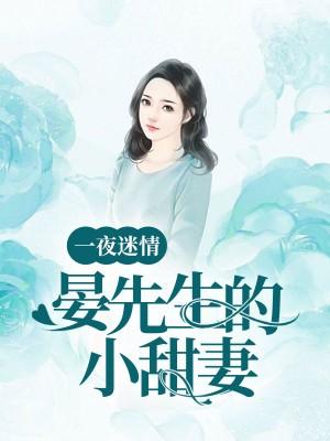 一夜迷情:晏先生的小甜妻